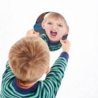 Face Shape Mirror Visual Toy | Sensory Toy – Sensory Wise
